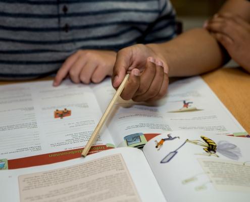 OBS de Dukdalf Dronten leren